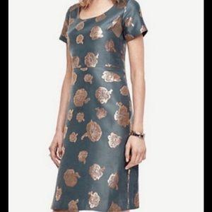 Ann Taylor NWT fit flare dress sz 14
